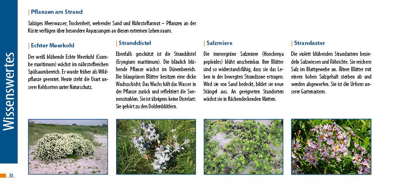 17_09_Wanderführer_Fördesteig_web38